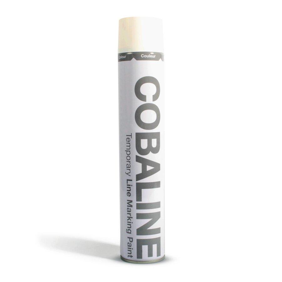 Bílá krátkodobá rychleschnoucí aerosolová barva - 750 ml (80000269)