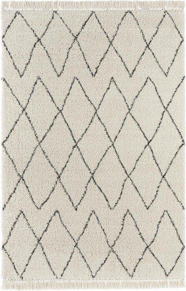 Béžový kusový moderní koberec Desiré - délka 290 cm a šířka 200 cm