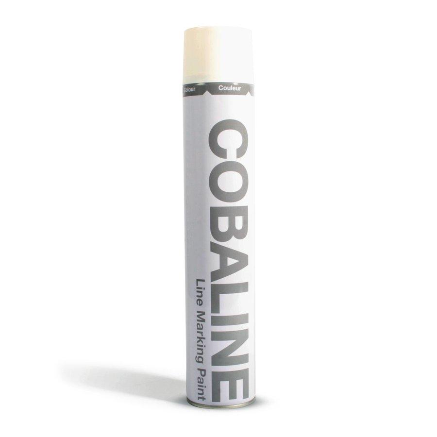 Bílá permanentní rychleschnoucí barva - 750 ml (80000260)