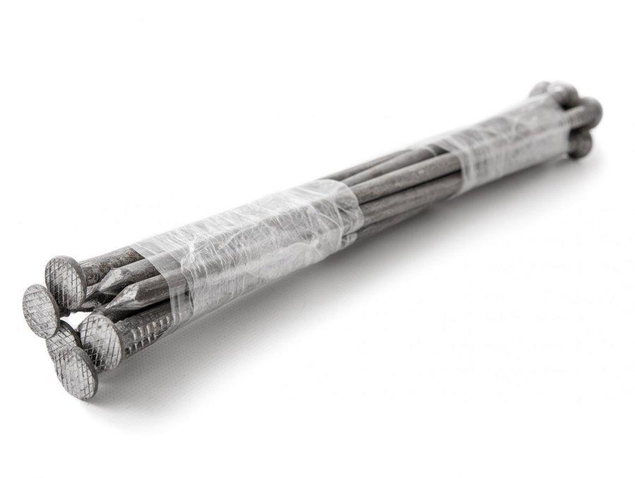 Kovový kotvící hřeb - průměr 8 mm a délka 30 cm